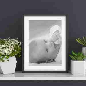 Large Photographic Prints Ultra High Quality