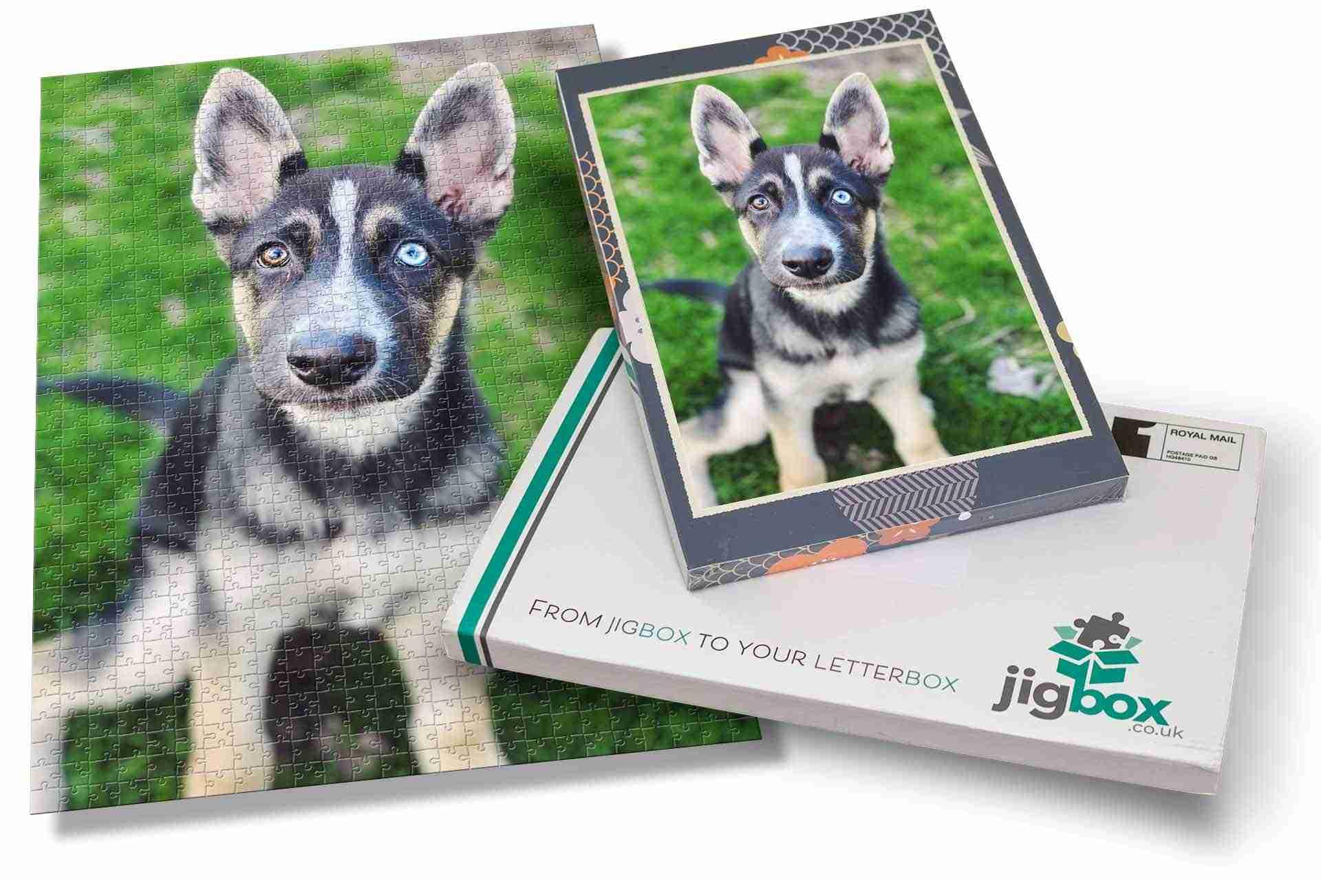 Dog-Portrait-JigBox-Puzzle-Mockups-July-2021Portrait