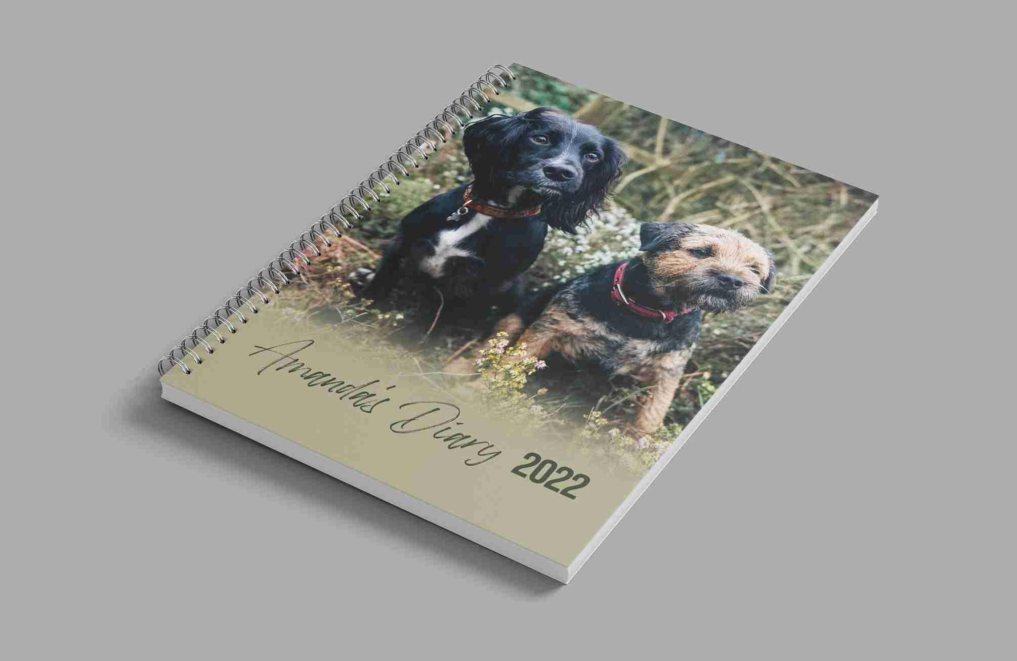 ETSY-Amandas-Diary-Cover