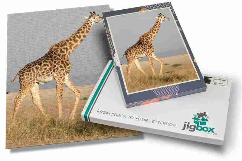 Jigbox-image-55