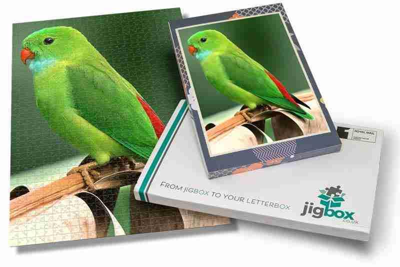 Jigbox-image-56