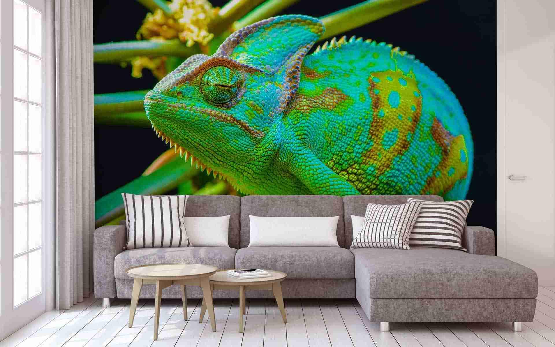 chameleon-wallpaper-getitprinted.com-